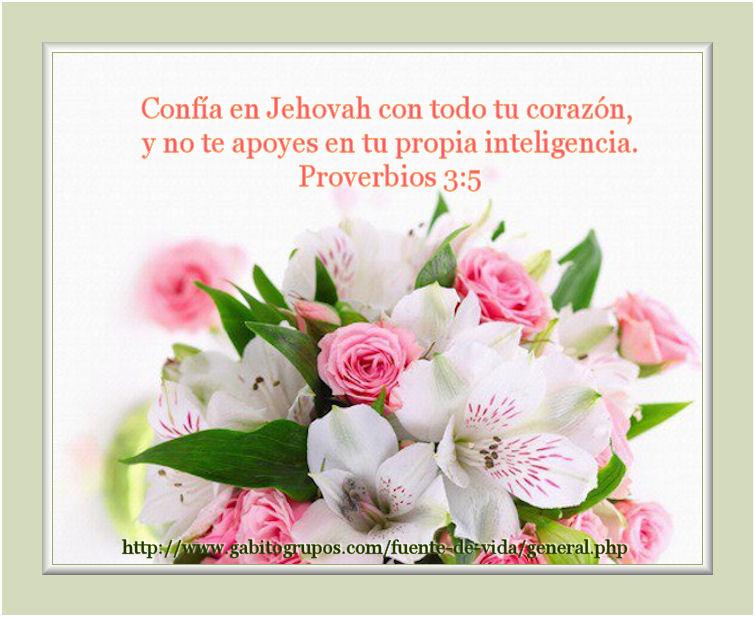 Proverbios 3 5 Tarjetas Cristianas Fuente de Vida Gabitos